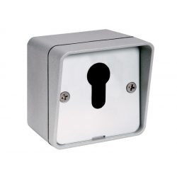 Kulcsos Kapcsoló Sm12